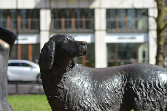 Dog from the Animals in War Memorial, Park Lane, just south of Marble Arch.