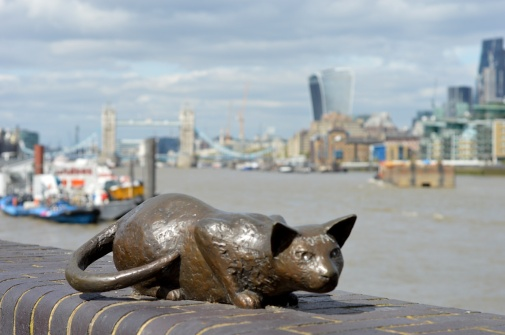 This cat is part of an endearing collection of statues in Bermondsey featuring also the Dr, his wife and child. (Picture: Jackie Buckle)