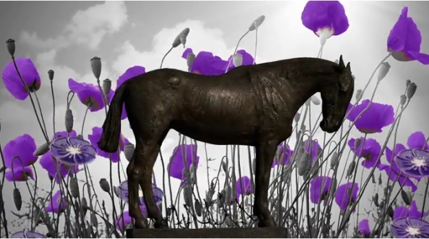 The War Horse Memorial organises a Purple Poppy day on August 23rd each year, to remember the animals lost in conflicts (Picture War Horse Memorial)