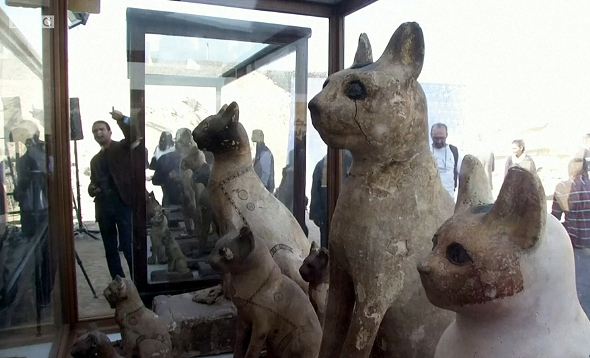 Cat statues recently found at the ancient burial ground of Saqqara, just south of Cairo (Picture: BBC)